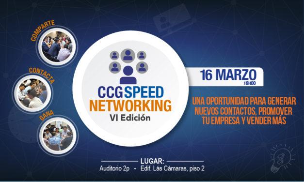 CCG Speednetworking – VI edición